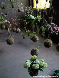 Kokedamas y los jardines de cuerdas en www.tuinen.es