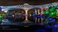 Popular on 500px : Tabiat Bridge in Tehran Iran by hesmon