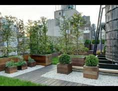 Anderson Cooper's New York rooftop garden. You can see one of New York's iconic water towers to the right. What a great use of space. Another story of New York. Biddy Craft