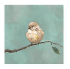 This is a framed canvas reproduction. This bird is simple and vibrant and features painterly textured brush strokes for an updated take on traditional Audobon p