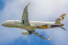 https://flic.kr/p/rZzbL1   Airbus A320-232(WL) Etihad Airways F-WWDC (TLS)