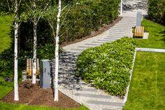 Zagospodarowanie zielenie wokół obiektu mieszkaniowego Angel Wawel w Krakowie przez Park-M