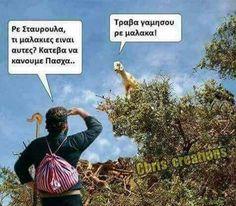 Greek Language, Biologist, Greek Quotes, Hilarious, Funny, Out Loud, Fails, Laughter, Jokes