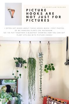 How's it hanging? Using a picture rail to hang plants Diy Picture Rail, Picture Rail Bedroom, Picture Rail Hanging, Picture Rail Molding, Hanging Pictures, Indoor Plant Hangers, Rope Plant Hanger, Metal Plant Hangers, Hanging Plant Wall