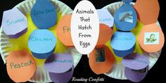 Fun project about all the creatures that hatch from eggs