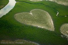 coeur de Voh, nouvelle caledonie