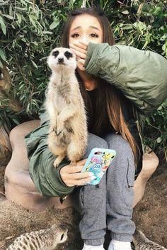Ariana Grande  animals
