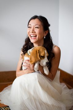 oh! i want one! (little miss beagle with pearls that is!)