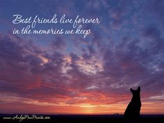 Rainbow Bridge Pets are never forgotten.  Loss of a Pet, Pet Memorial, Paws, BFF, Best Friends Forever, Loyal Companion