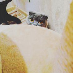 Фото Боня в Instagram • 13 ноября 2015 г. в 23:10