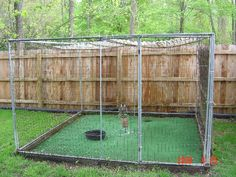 """Everyone knows how hard figuring out what a mews and weathering """"should"""" look li. Everyone knows how hard figuring out what a mews and weathering """"should"""" look li… Everyone k Dog Kennel Designs, Diy Dog Kennel, Cat Care Tips, Pet Care, Outdoor Dog Runs, Portable Dog Kennels, Dog Playground, Dog Yard, Pumpkin Dog Treats"""