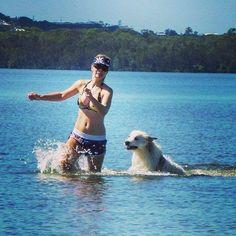 Belles gonna get ya!! ;-)  #greatpyreneesofthemoment #greatpyreneesofthehour #greatpyrenees #greatpyreneesmountaindog #noosa #sunshinecoast #sunshinecoastdaily #australia #swimming #bikini #dogsonadventures #dogsonholiday #bestphotgram_dogs #bestwoof #dogs #dogsofinstagram #swimmingdog #cutedogs  by babybelleoz  http://bit.ly/teacupdogshq