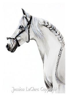 White Horse www.jessicaleclerc.com.au