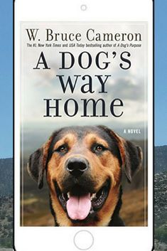 5 big woofie stars to A Dog's Way Home! My review!