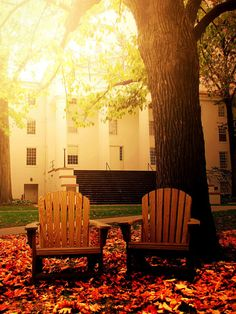 Penn Hall, Gettysburg College-- what I wouldn't give to be back here with Kelly Chubb. Oh The Places You'll Go, Places Ive Been, Gettysburg College, Gettysburg Battlefield, I Carry Your Heart, Life Is A Journey, Outdoor Living, Outdoor Decor, Travel Memories