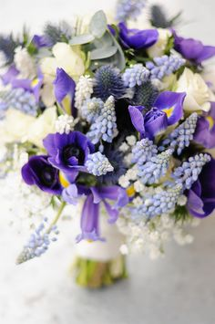 country spring bridal bouquet filled with muscari, iris, ivory spray roses and baby's breath