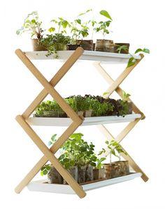 FOTOD: 10 lahedat moodust, kuidas ruumis taimi esitleda - Maakodu.ee