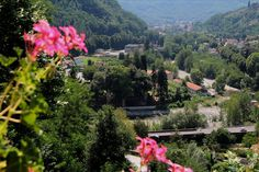 View from our apartments! Lucca, Tuscany, Apartments, Countryside, Paths, Dolores Park, Villa, Spa, River