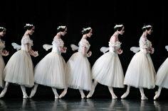 Paris Opera Ballet / Giselle