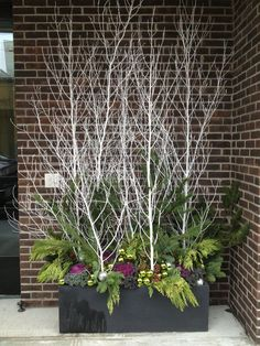 Sticks and twigs can be a thrifty source of drama for a container garden. Never tried container gardening in winter before? Well, you're missing out on a lot! Read our article to find the best winter container garden ideas. Christmas Urns, Outdoor Christmas Decorations, Christmas Holidays, Christmas Wreaths, Winter Holiday, Christmas Branches, Christmas Garden, Christmas Things, Cozy Christmas