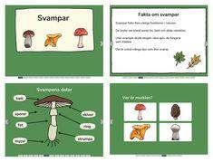 Swedish Language, Preschool, Education, Kid Garden, Nursery Rhymes, Educational Illustrations, Learning, Kindergarten, Day Care