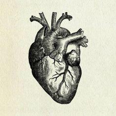 biological heart
