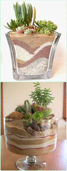 DIY Dessert Sand Terrarium - DIY Sand Art Terririum Ideas Projects & Tutorials Source by Succulent Arrangements, Cacti And Succulents, Planting Succulents, Decoration Buffet, Terrarium Plants, Succulent Terrarium Diy, Terrarium Wedding, Paludarium, Cactus Y Suculentas