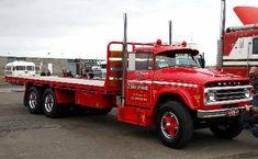 Train Truck, Road Train, Tow Truck, Cool Trucks, Big Trucks, 1952 Ford Truck, Old Bangers, Old Dodge Trucks, Dodge Power Wagon