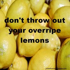 Overripe Lemons - Jodeze Home and Garden Dog Flea Remedies, Home Remedies, Good To Know, Did You Know, Lemon Uses, Natural Cleaners, Cleaning Solutions, Cleaning Tips, Keeping Healthy