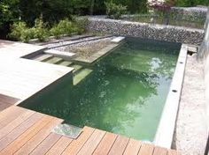 How To Build A Natural Swimming Pool   Google Search