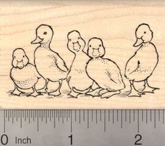 Row of Ducklings Duck Rubber Stamp -- Click image for more details.