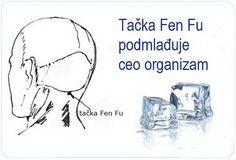 Tačka Fen Fu podmlađuje ceo organizam. Neverovatno, ali istinito!