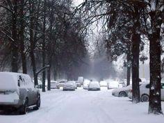 今年首場暴風雪  莫斯科走路快過開車 | 國際焦點 | 中央社即時新聞 CNA NEWS