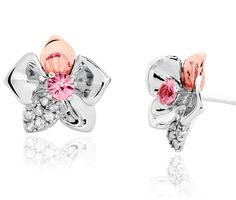 Clogau Earrings Orchid Stud Silver | C W Sellors Fine Jewellery and Luxury Watches