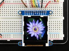 Possibilities for homemade GameBoy-like project ($15 for this component; super cheap) -- Adafruit 1.44 Color TFT LCD Display
