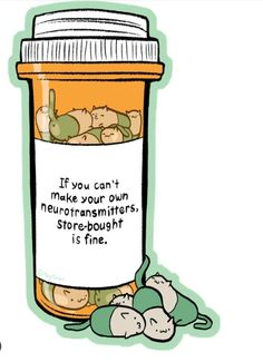 If you can't make your own neurotransmitters, store-bought is fine. ^•^