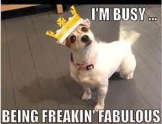As demonstrated by Miss Mary. #FreakinFabulous
