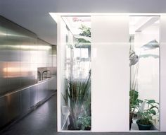 Gianni Botsford, Edmund Sumner · Garden Apartment