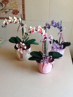 Orchidee pannolenciby Maria D'Eugenio