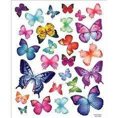 26 Vibrant Butterflies...