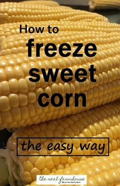 How to freeze sweet corn the easy way- fast, easy, and so much better than store bought frozen corn Freezing Fresh Corn, Freezing Fruit, Freezing Vegetables, Frozen Vegetables, Canning Vegetables, Recipe For Freezing Sweet Corn, Easy Freezer Corn Recipe, Freezing Tomatoes, Frozen Corn