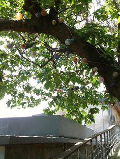 樹和燈泡2