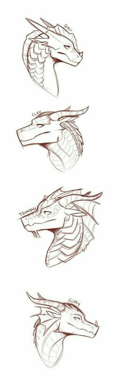 """""""Wings of Fire"""" these are some of my favourite dragons by SylvernStreak Cool Art Drawings, Art Drawings Sketches, Animal Sketches, Animal Drawings, Wings Of Fire Dragons, Dragon Sketch, Dragon Artwork, Dragon Drawings, Mythical Creatures Art"""