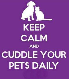 Please do cuddle your pets. #pets #moms #bestmomstv #motherhood #home #kids #animals