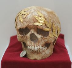 """records-of-fortune: """" The skull of a young athlete, with a gold wreath fastened to the bone. Roman, 1st century AD. A silver tetradrachm of the city of Polyrrhenia, from the time of the emperor..."""
