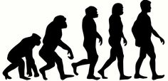A Fascinating New Theory About the Human Mind, Evolution and Mortality Theory Of Evolution, Human Evolution, Facts About Humans, Top 5, Human Mind, People Talk, Arts And Entertainment, Weird And Wonderful, Weird Facts