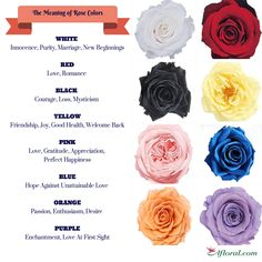 Know what your wedding flowers symbolize and create a bouquet with meaning!  Afloral.com has silk and preserved roses to DIY your wedding@