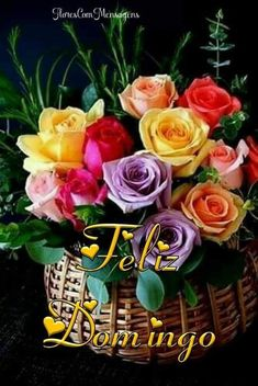 Good Afternoon, Good Morning, Bouquet, Rose, Flowers, Plants, Floral Wreath, Wreaths, Night