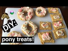 DIY HORSE TREATS- Donuts and PopTarts! - YouTube