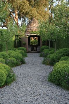 a path of gravel with high soft topiaries and boxwood.  What else can you ask for.